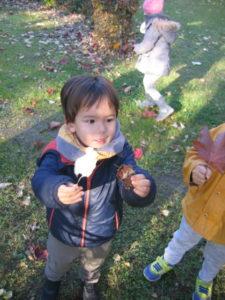 IMG 6494 e1542039459794 225x300 Collecte de feuilles au Parc Verdun