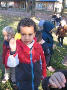 IMG 6495 e1542039776859 225x300 Collecte de feuilles au Parc Verdun
