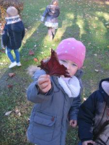 IMG 6501 e1542039681381 225x300 Collecte de feuilles au Parc Verdun