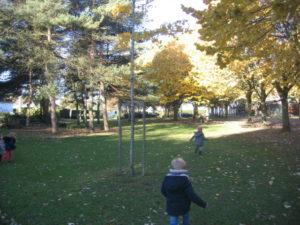 IMG 6504 300x225 Collecte de feuilles au Parc Verdun