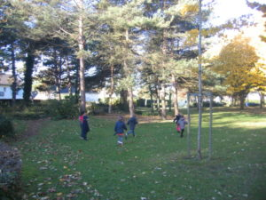 IMG 6505 300x225 Collecte de feuilles au Parc Verdun