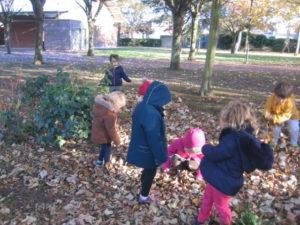 IMG 6510 300x225 Collecte de feuilles au Parc Verdun