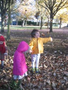 IMG 6511 e1542039609600 225x300 Collecte de feuilles au Parc Verdun