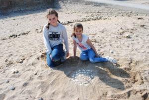 DSC 0023 300x201 Land art à la plage en CE2 CM1
